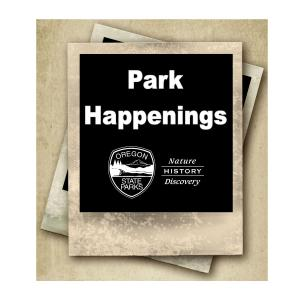 Park Happenings Icon