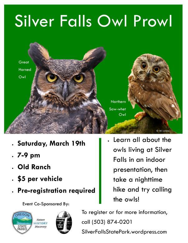 Owl Prowl Poster v2